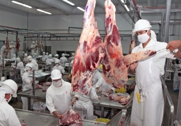 Paraguay proyecta exportar más carne a Chile